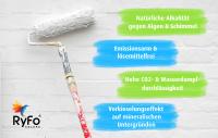 RyFo Colors Silikat Fassadenfarbe 12,5l
